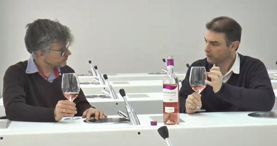 Cata de vino Añoranza Tempranillo Rosé