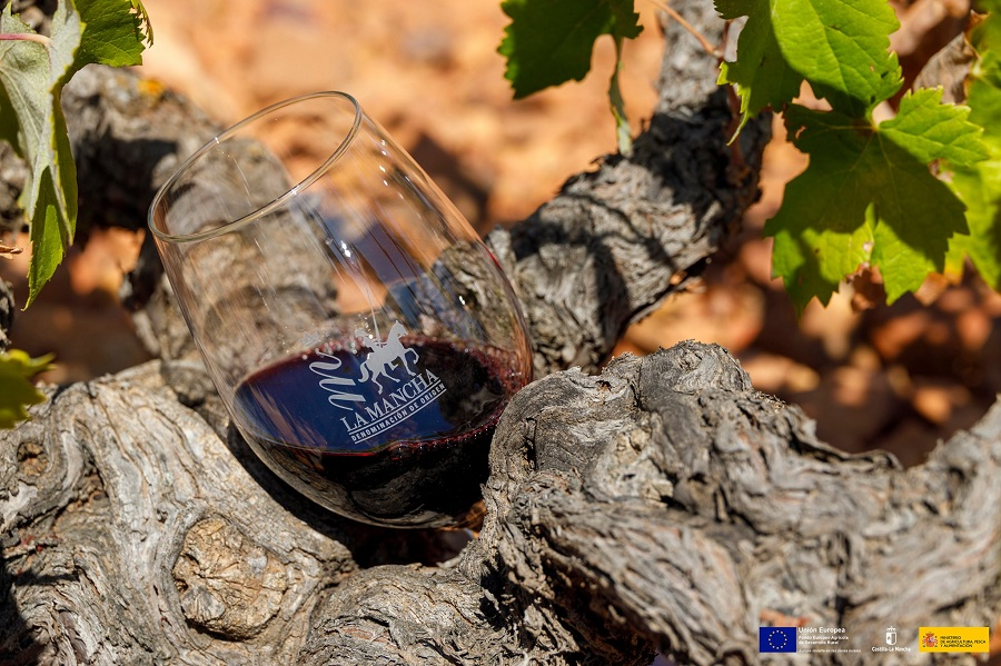 Copa de vino tinto de La Mancha en vid