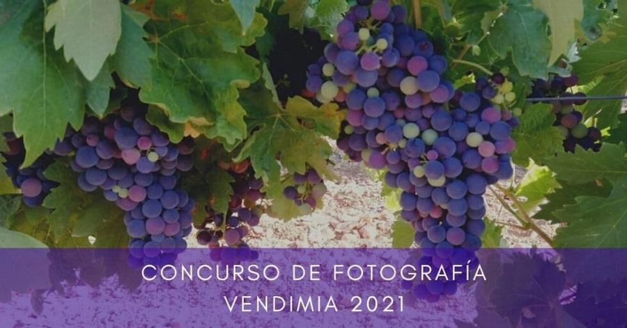 Concurso de Fotografía 'Vendimia Campos Reales' 2021