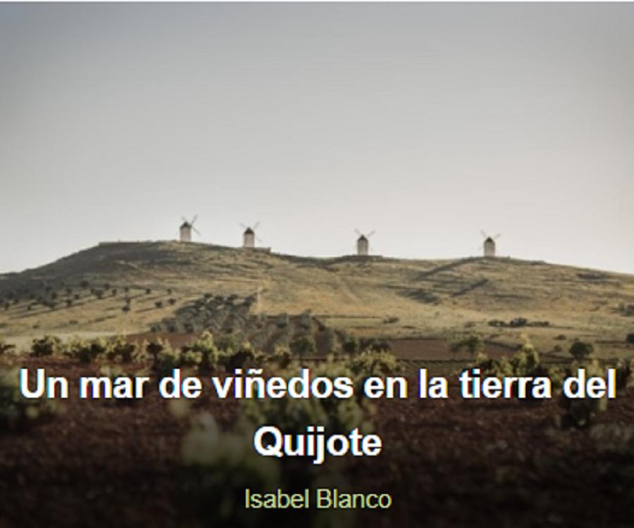 Vinetur, artículo Ruta del Vino de La Mancha