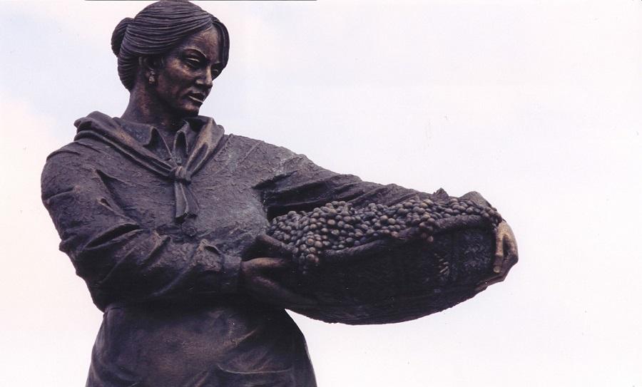 Vendimiadora en Miguel Esteban (Toledo)